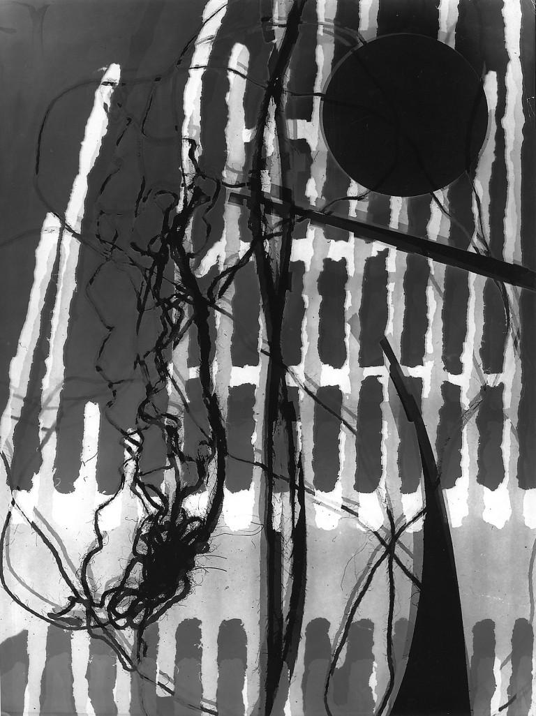 Roger Catherineau, Photogramme , 1957 Vintage gelatin silver print, (40 x 30.5 cm)