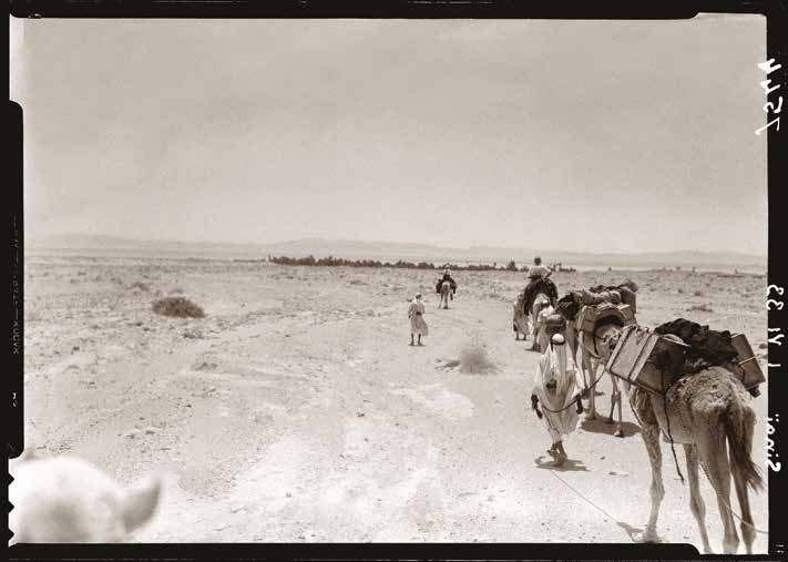 Fred Boissonnas, Sinai. Caravan in the Desert of Sand (on the coast of Aqaba, near Dahab). 01.06.1933, Roussen Collection B.cat- 7544.
