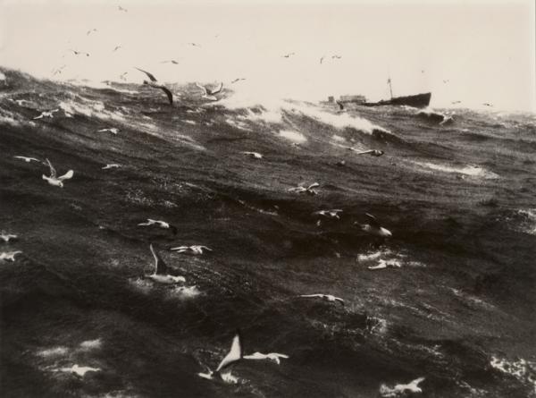 Sur les bancs de Terre Neuve, 1952