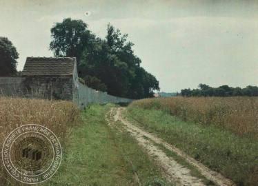[Chemin, champs de blé, mur, petite construction], Antonin PERSONNAZ, Entre 1907 et 1936. - 1 photographie positive transparente: verre autochrome, couleur; 9 x 12 cm