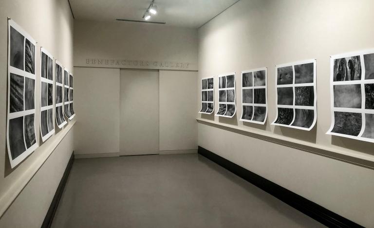 Benefactors Gallery