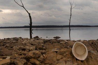 Tashara Roberts (2013) A Day at the Lake